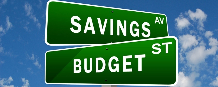 Savings Budget for buying a 10 Year Terms Policy